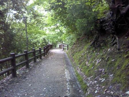 0601_kuragari5.jpg