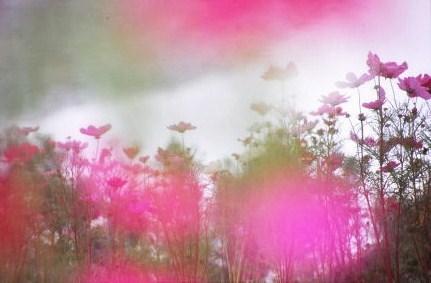 20111014_noririn.jpg