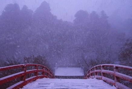 20120102_noririn.jpg