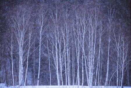 20120201_noririn.jpg