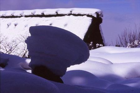 20120203_noririn.jpg