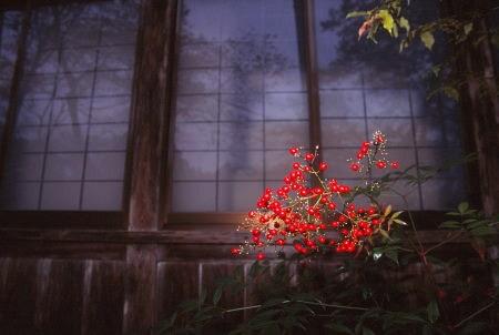 20120307_noririn.jpg