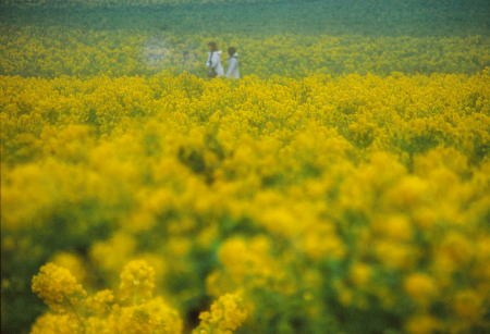20120314_noririn.jpg
