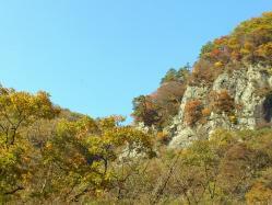 吾妻渓谷の紅葉2