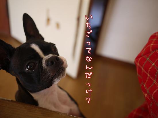 He_AR.jpg