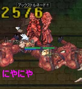 2012214psn1.jpg