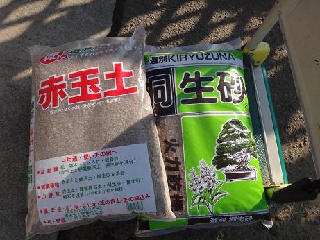 盆栽植え替え2