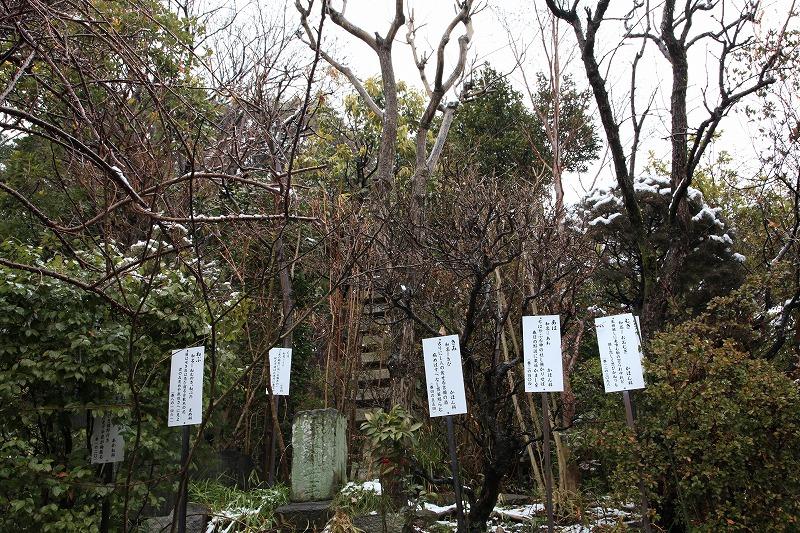 武蔵国分寺2
