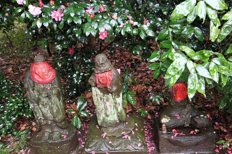 武蔵国分寺6