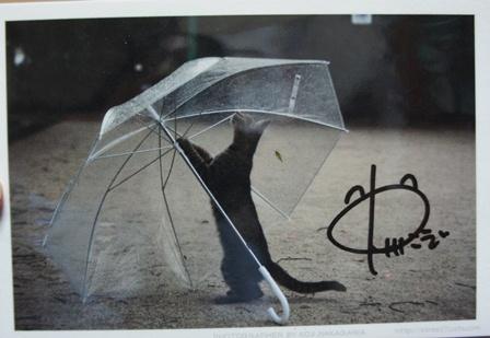 中川さんのサイン