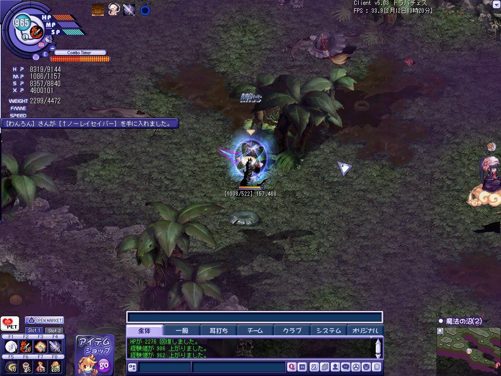 TWCI_2011_2_12_13_20_28.jpg