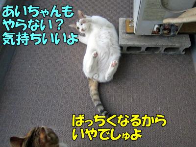 131211-03.jpg