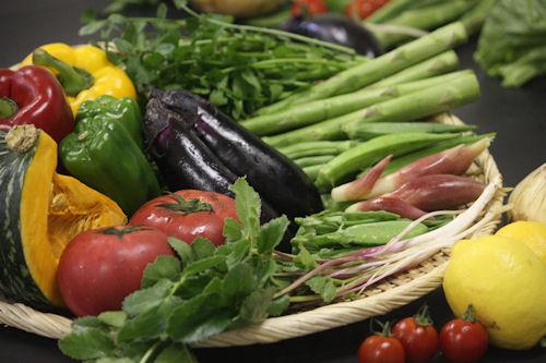 常陸国の野菜