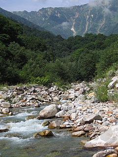 篭川上流部