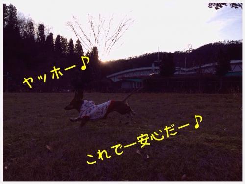 20140107212244bdf.jpg