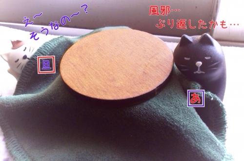 201401281912064c9.jpg