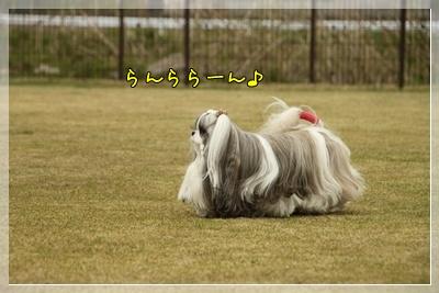 2011_0505_144540AA.jpg