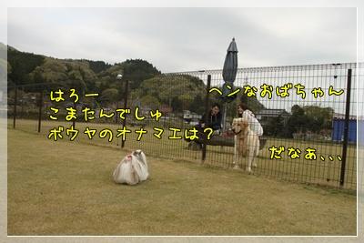 2011_0505_144908AA.jpg