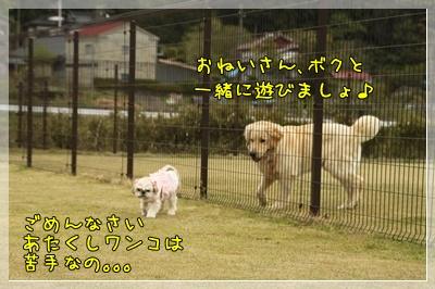 2011_0505_145831AA.jpg