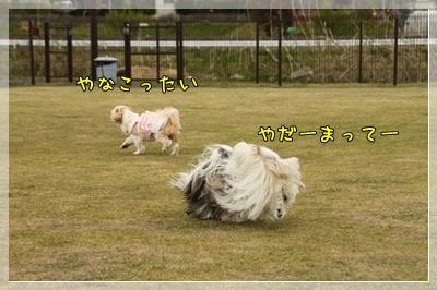 2011_0505_145842AA.jpg
