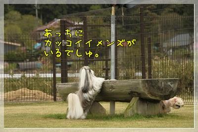 2011_0505_150214AC.jpg