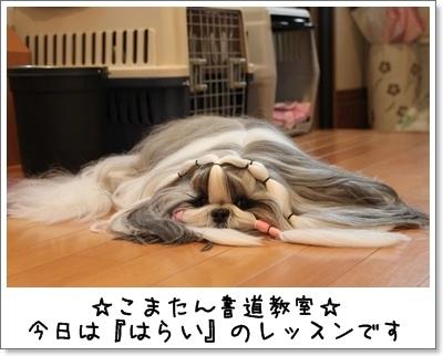 2011_0513_075924AA.jpg