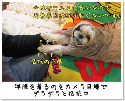 2011_0514_100934AA.jpg