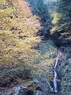 大滝の秋2