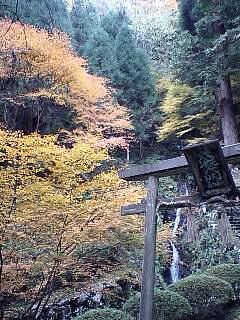 大滝で秋3