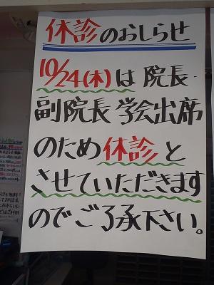 001_20131023083934a60.jpg