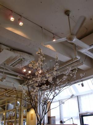 森彦2号店 店内:春