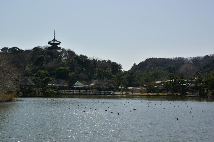 三溪園全景
