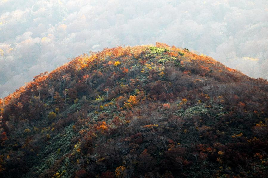 栗駒山10.16 737-s