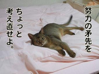 2010_05270021.jpg