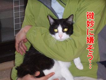 2010_06010042.jpg