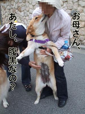 2010_06050010.jpg