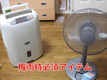2010_06190001.jpg