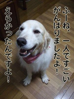 2010_06280030.jpg