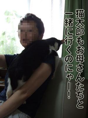 2010_07060057.jpg