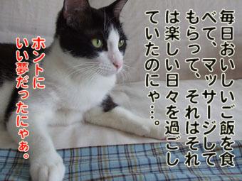 2010_07070095.jpg