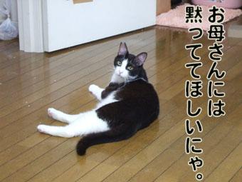 2010_07090022.jpg