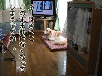 2010_07150039.jpg