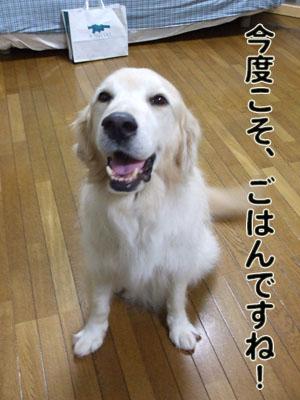 2010_07170005.jpg