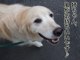 2010_07210012.jpg