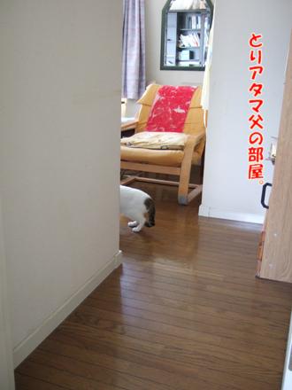 2012_04080011.jpg