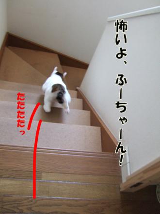 2012_04080012.jpg
