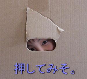 jackhoihoi4.jpg
