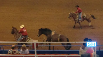 rodeo05.jpg