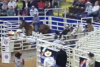 rodeo06.jpg