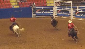 rodeo07.jpg